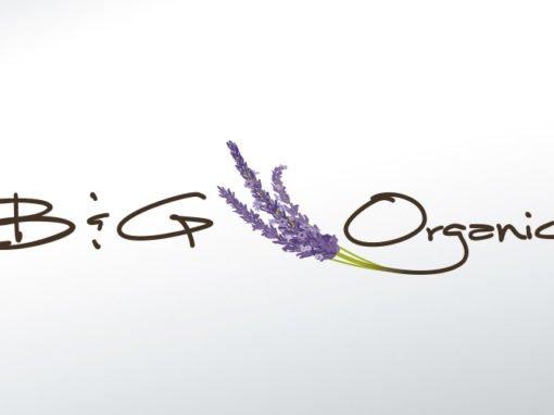 B&G ORGANICS BRANDING
